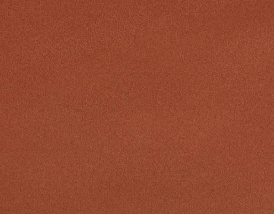 LEATHER - Burnt Orange